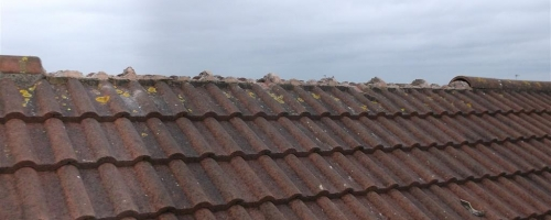 Roof Damaged In Recent Storms